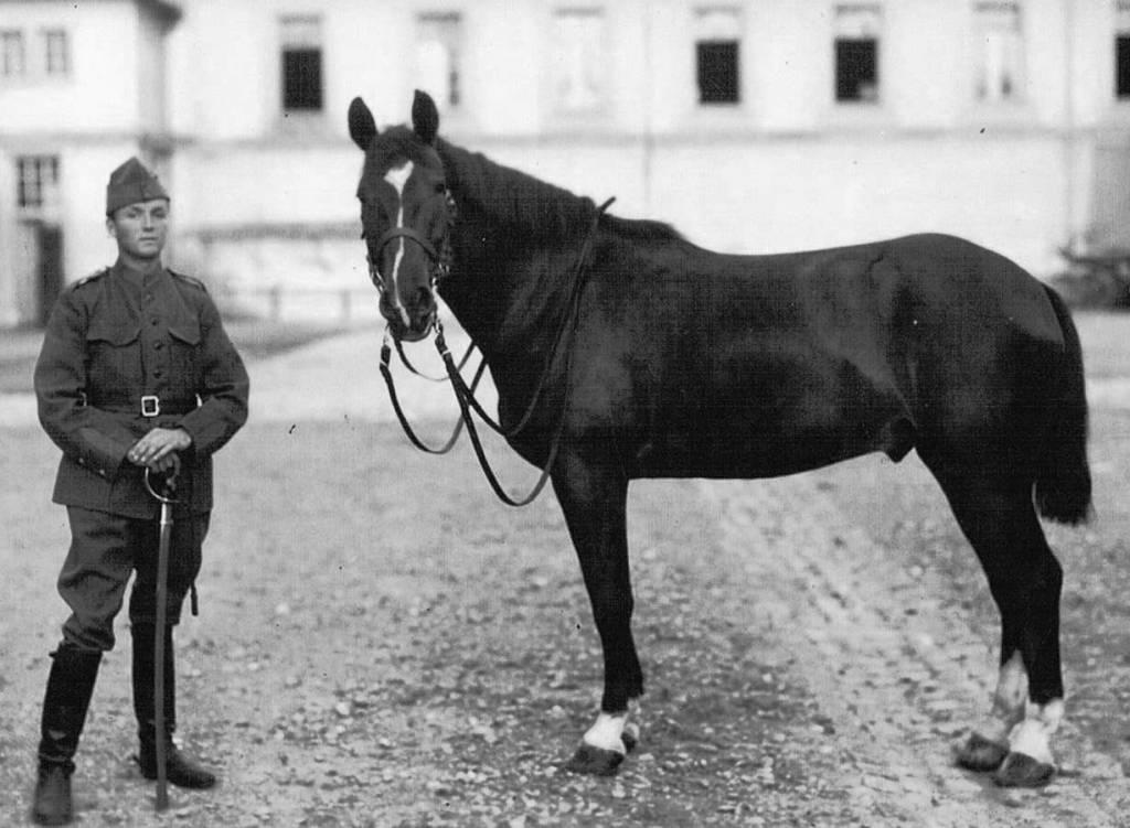 Cavalerie suisse