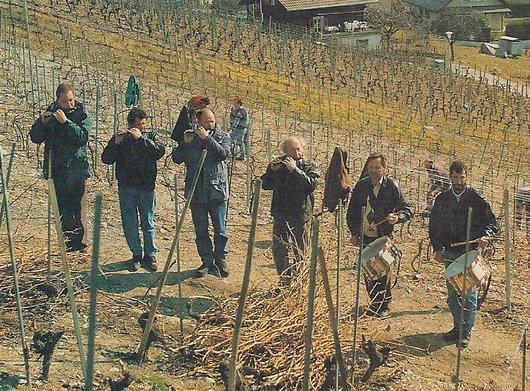 Vigne, le travail en musique
