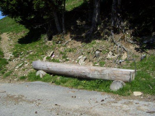 La Planniaz, fontaine en bois au pied de la route forestière de Chessy