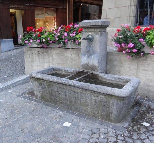Fontaine à la Cheneau-de-Bourg