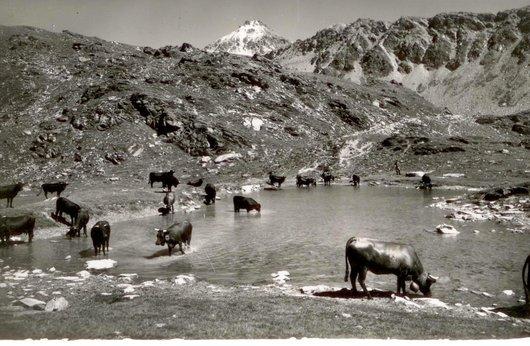 Chandolin, vers 1953