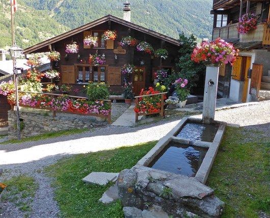 Fontaine et Chalet fleuris