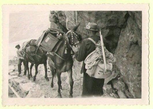 Transports à dos de mulets