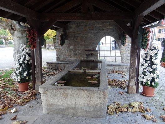 La vieille fontaine - Port de Pully