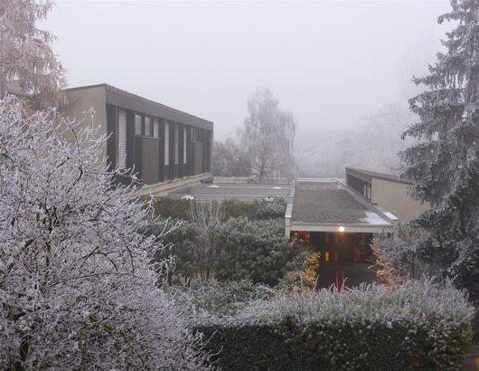 Bernex, brouillard, givre, printemps, soleil