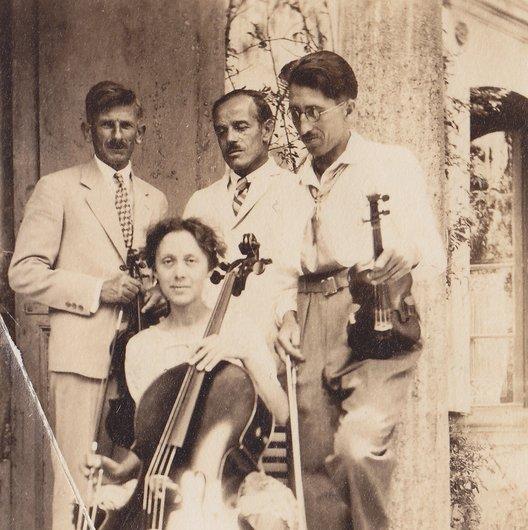 Les amis violoniste