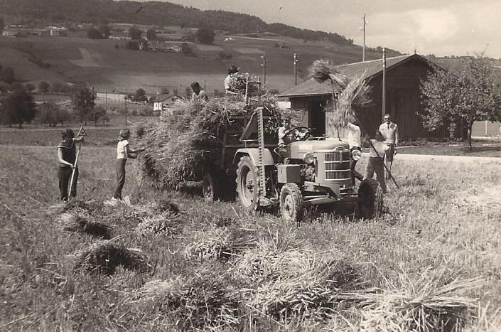 Moissons à Perroy vers 1960