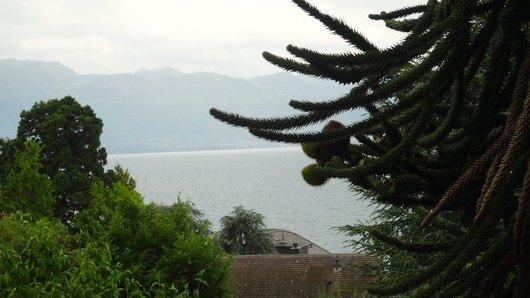 Le lac éléman sans le bateua depuis le musée de pully