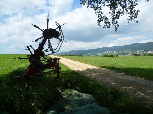 """""""Sculpture""""agricole_554"""