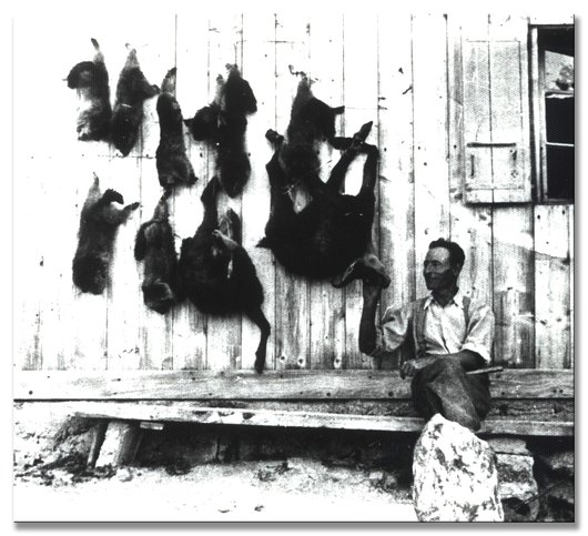 Le tableau de chasse d'Adolphe Epiney