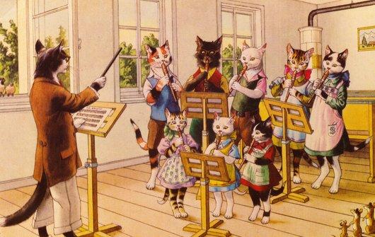 Carte chats- musique