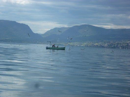 Pêche sur le Lac_567