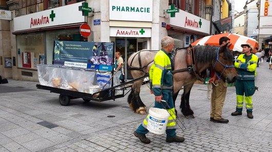 Campagne de sensibilisation au tri des déchets....