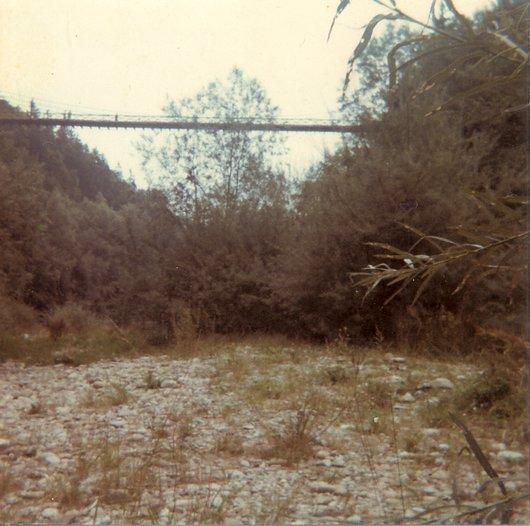 Pont suspendu de la Tuffière 2