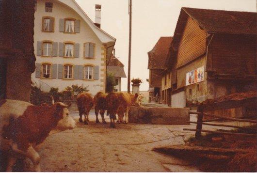 Fontaine du village.