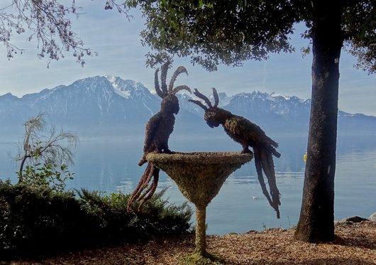La Vasque d'Amour - Fête des Narcisses