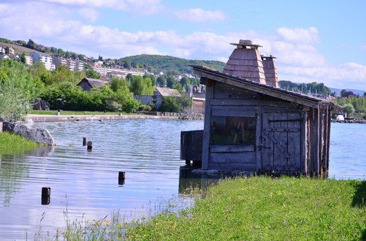 Maison inondée au Laténuim à Hauterive