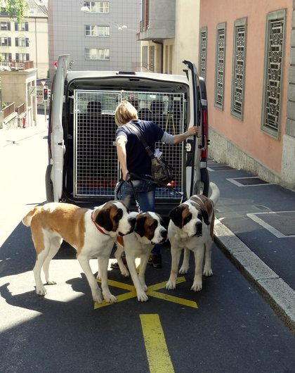 Barry on tour à Lausanne
