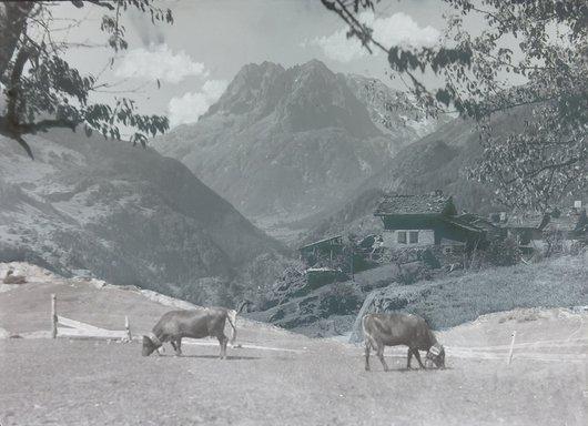 Les Aiguilles rouges vu depuis Finhaut, Valais