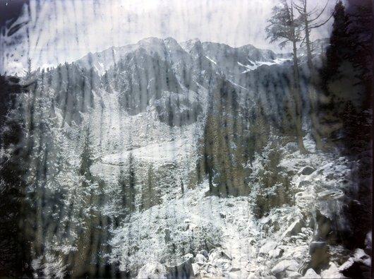 Bel oiseau vu depuis Fenestrale Finhaut, canton du Valais