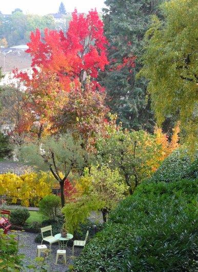 Petit jardin lausannois