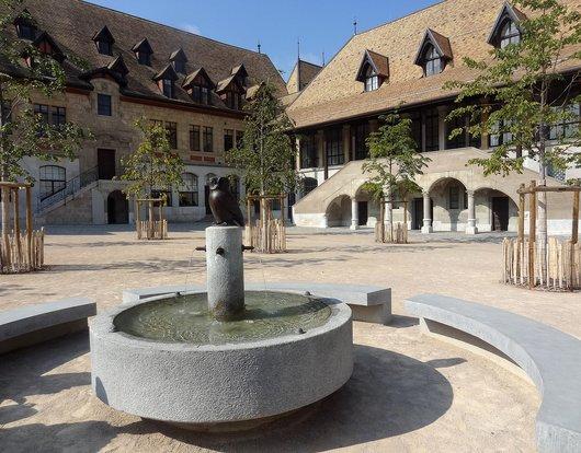 Genève - La «Chouette» du Collège Calvin