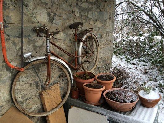 5     Vélo de couleur. 2jpg
