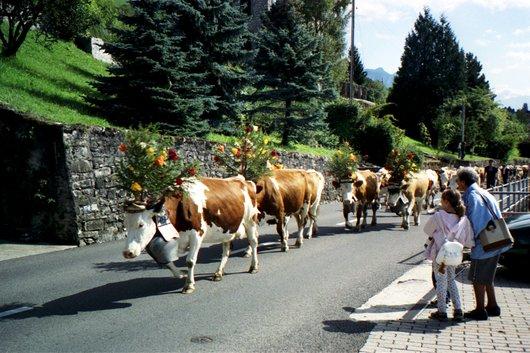 Brent-sur Montreux Désalpes en 2001