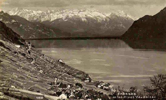 Epesse, le Léman et les Alpes vaudoises