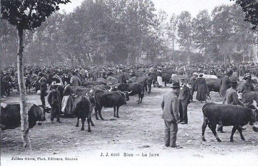 La Planta foire de Sion 1906