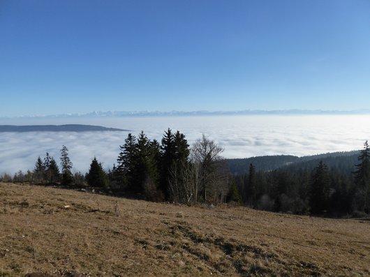 Panorama de Tête-de-Ran_653