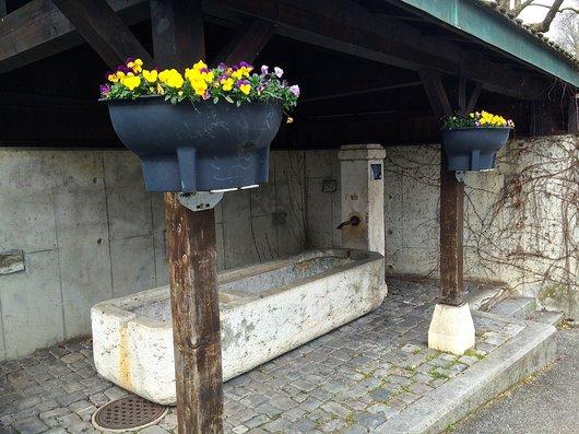 Petit-Lancy, une fontaine
