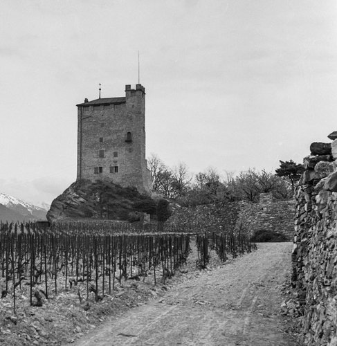 Château de Goubing