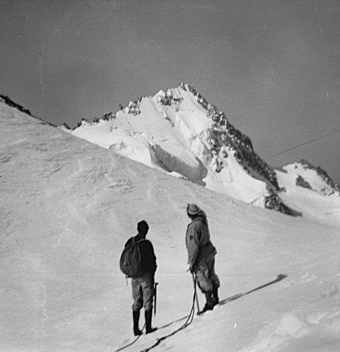 Aiguille du Chardonnet, 3824 mètres d'altitude