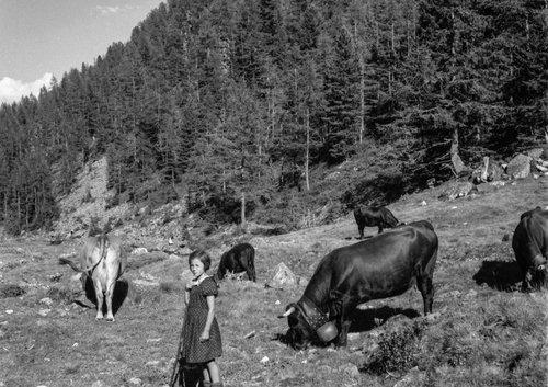 L'été au Val d'Arpette