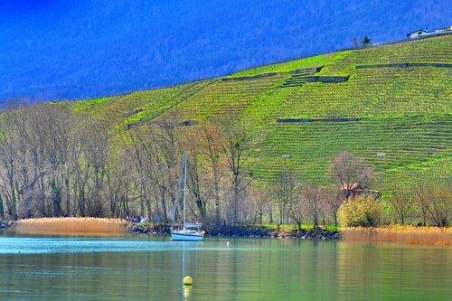 Entre lac et vignoble