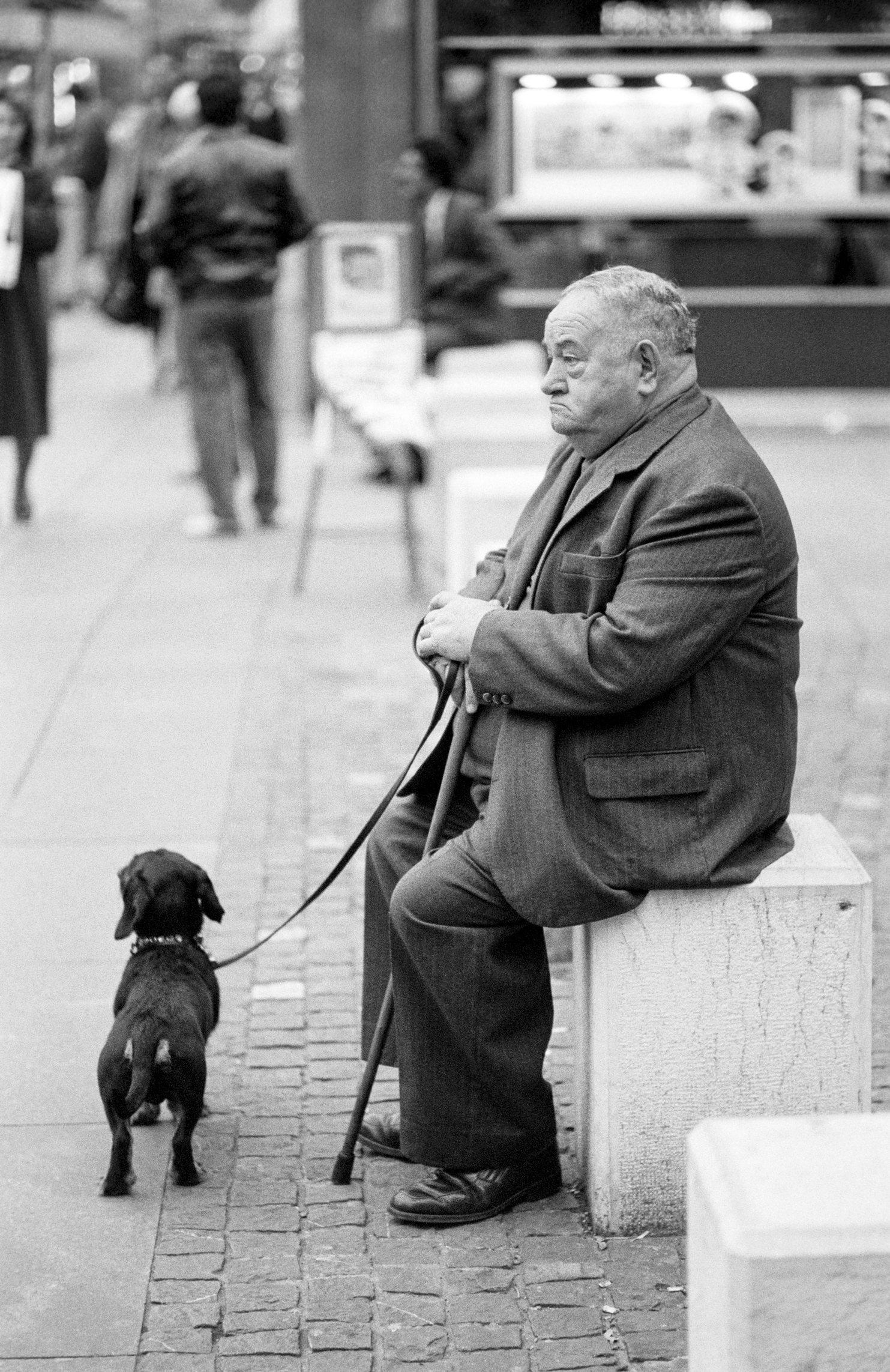 Genève, un inconnu et son chien