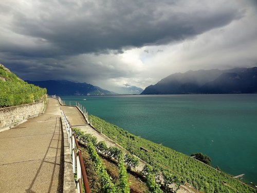 Lavaux : 10 ans d'inscription à l'Unesco