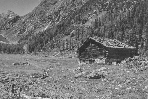 Raccard dans le haut d'Arpette, au-dessus du Chalet Pellouchoud, aujourd'hui disparu