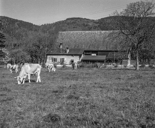 Ferme de Bonmont au Pied du Jura