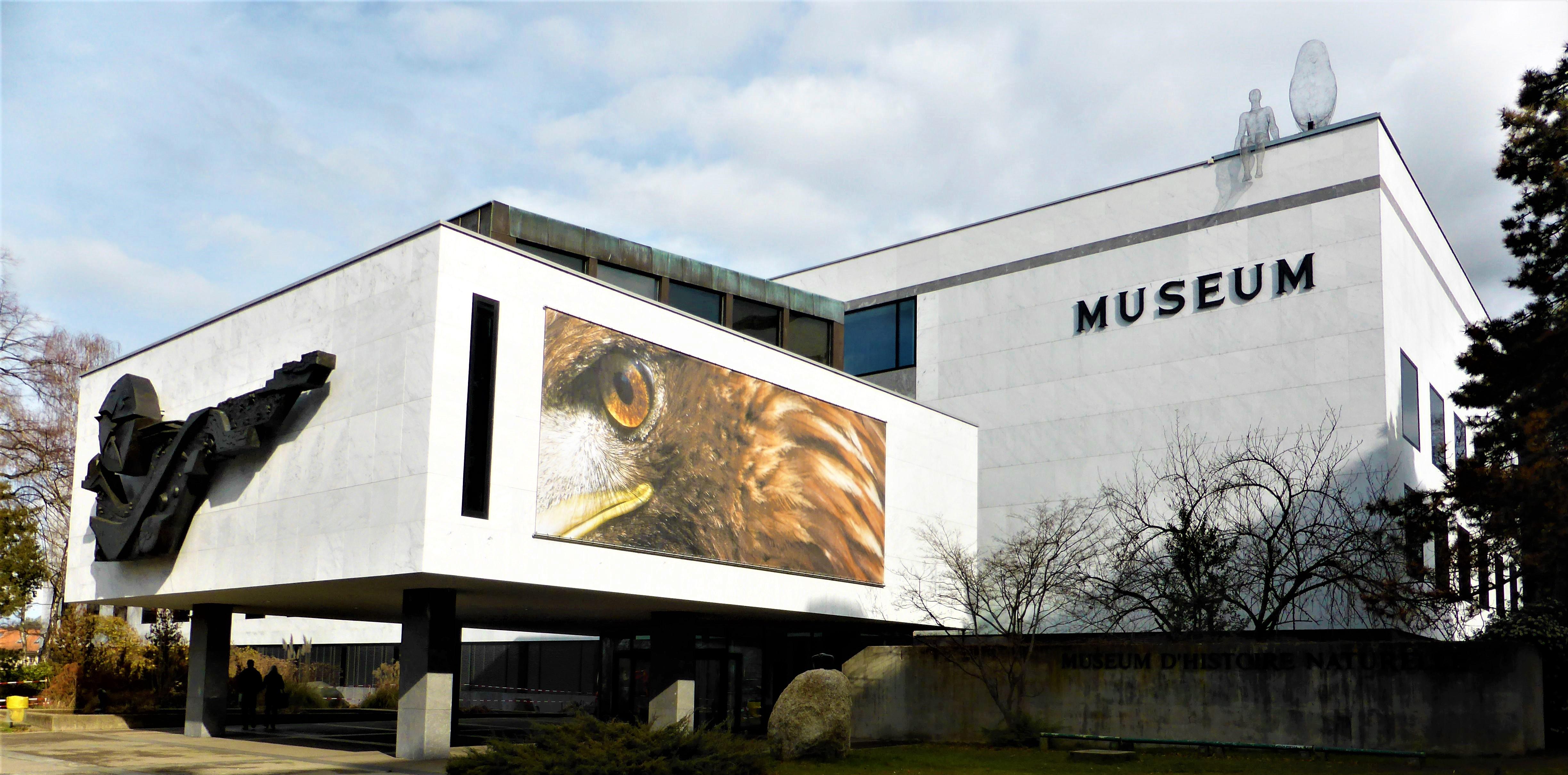 Musées et Fondations de Suisse