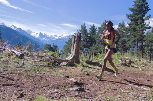 Course Sierre-Zinal 2017