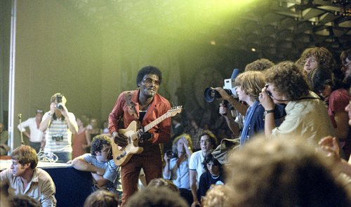 Montreux 1979, Albert Collins