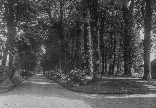 Parc du Château de Bonmont