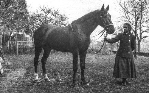 Emilie et le cheval