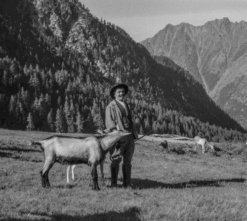 Chevrier au Val d'Arpette