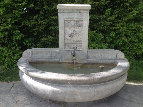 Fontaine AugusteForel