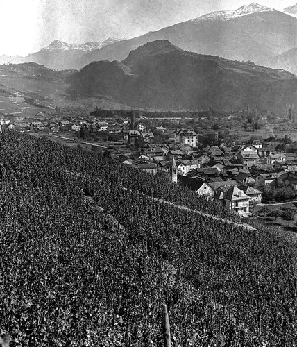 Plan-Conthey et le Mont d'Orge