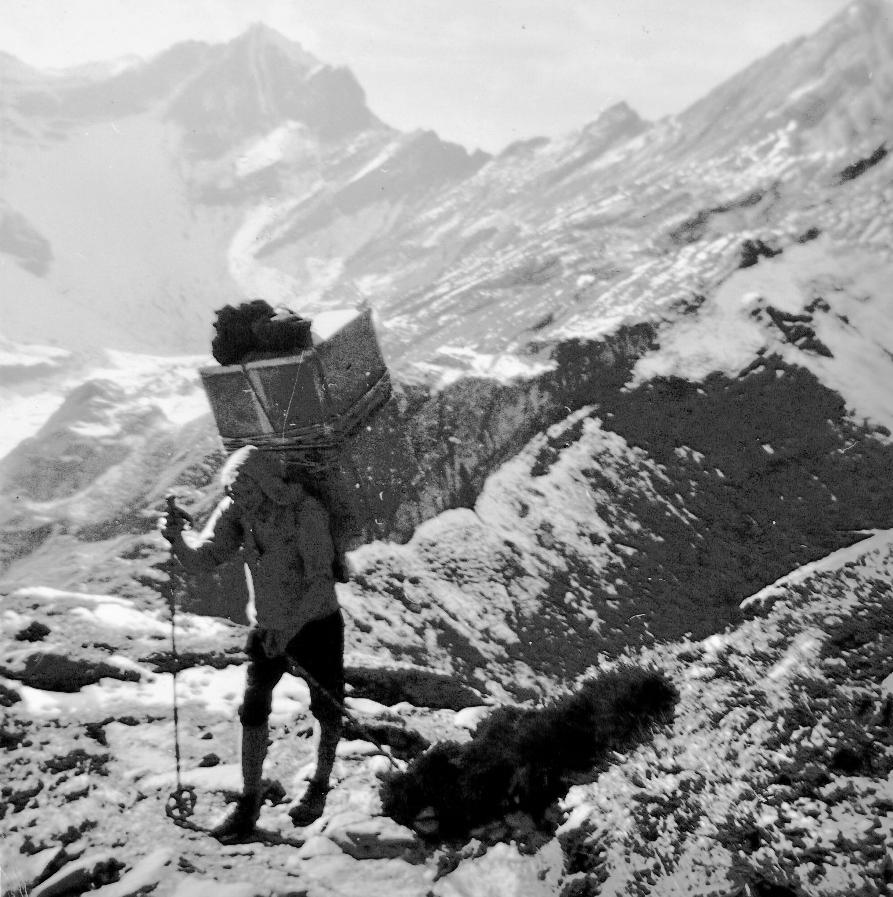 Porteur de montagne