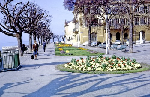 Quai Osterwald à Neuchâtel